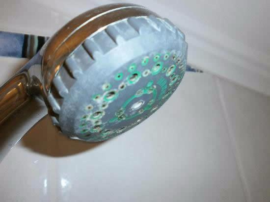 calç a la dutxa